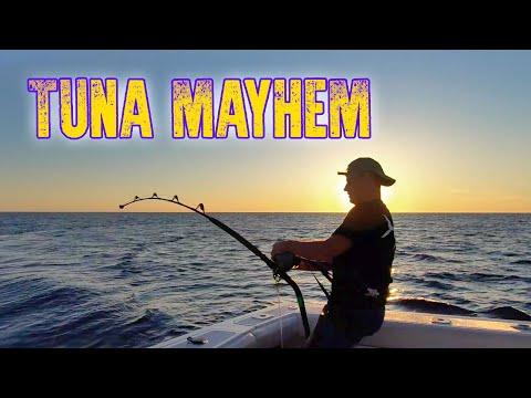 Fishing in Mallorca - Angler vs. strong bluefins