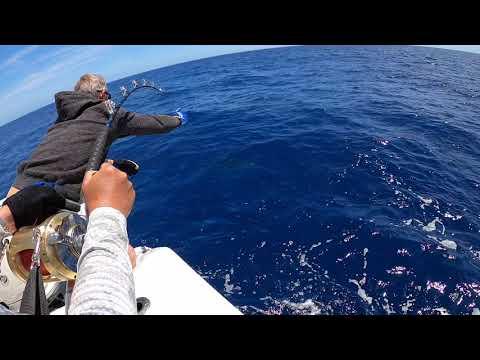 Giant Tunas Mallorca